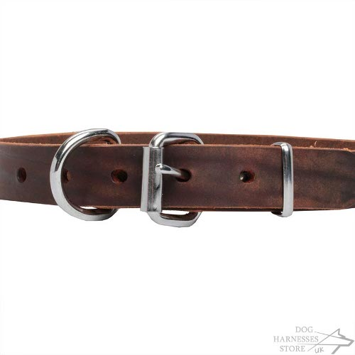Leather Dog Collar with Stars