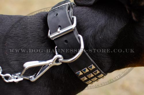 Leather Dog Collars for Dobermans