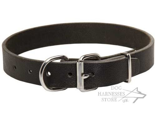 Leather Dog Collars for Sale