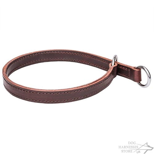 Leather Slip Collar for Dogs