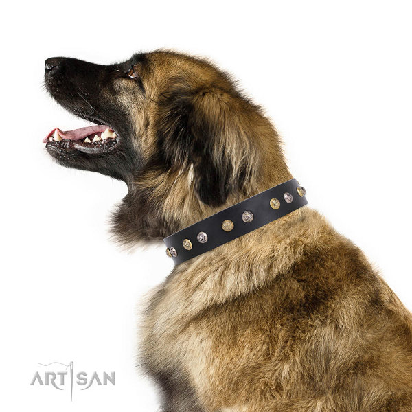 Leonberger Leather Dog Collars