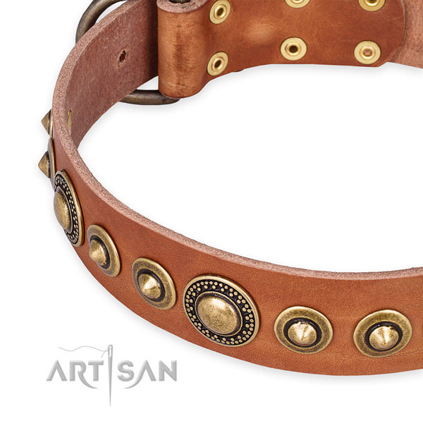 Luxury Leather Dog Collars