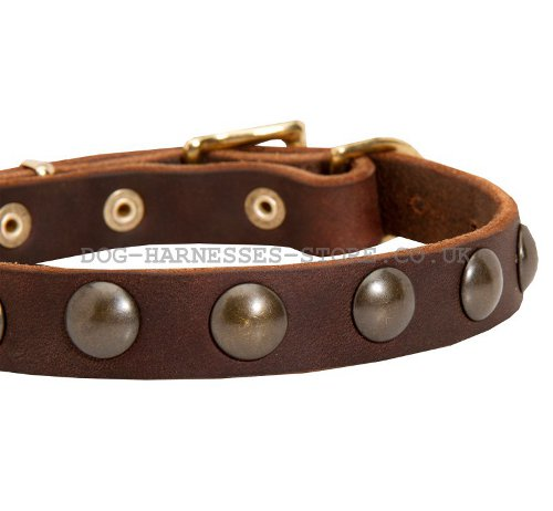 Narrow Leather Dog Collar For Malinois 163 30 90