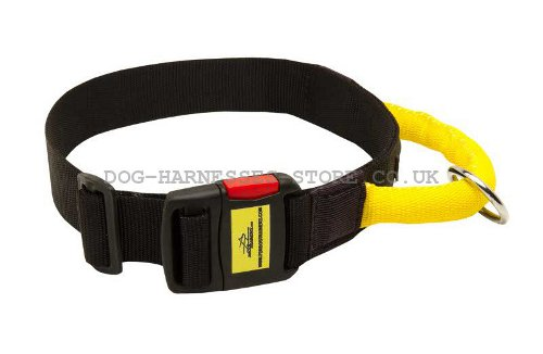 Dog Collar with Grab Handle