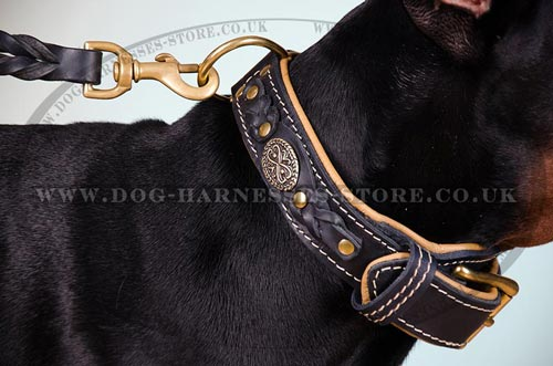 Doberman Collar