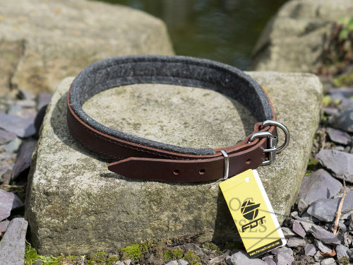 Padded Dog Collar UK
