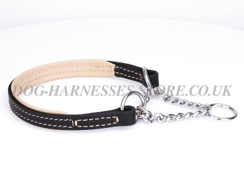 Padded Half-Check Dog Collar