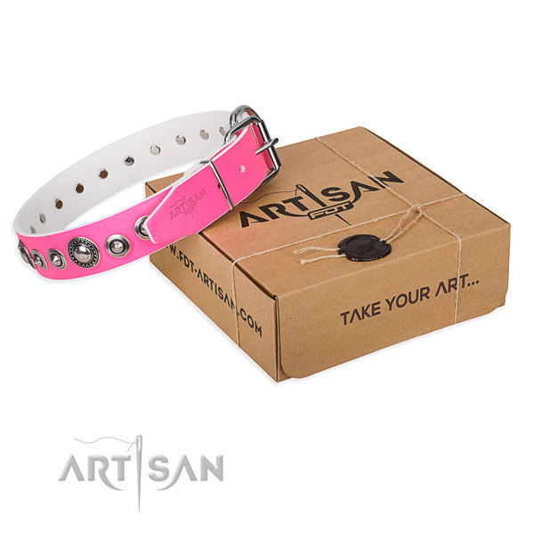 Pink Girl Dog Collars