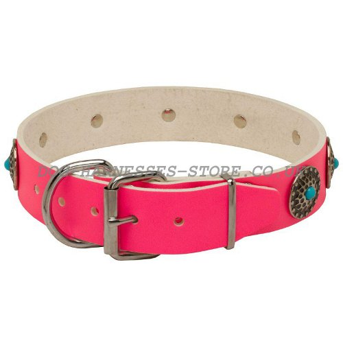Pink Girly Dog Collars