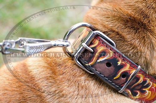 Hand Painted Dog Collars