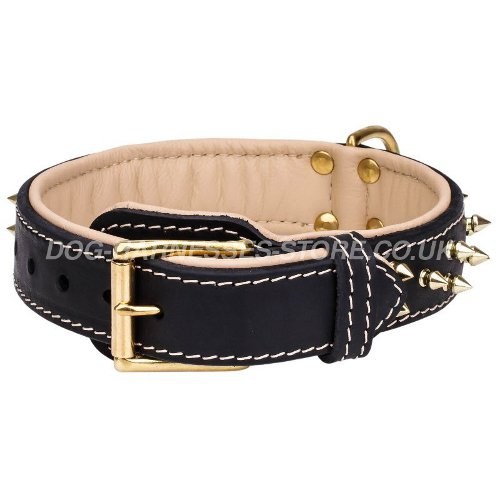 Soft Dog Collars