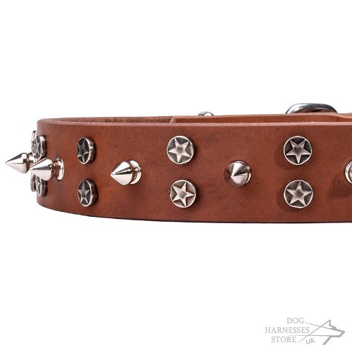 Spiked Leather Dog Collar with Stars