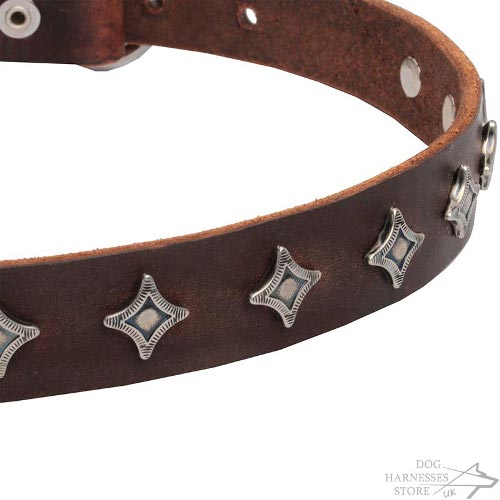 Star Dog Collars UK