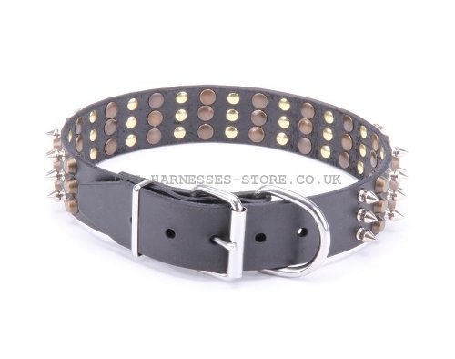 Studded Spiked Dog Collars