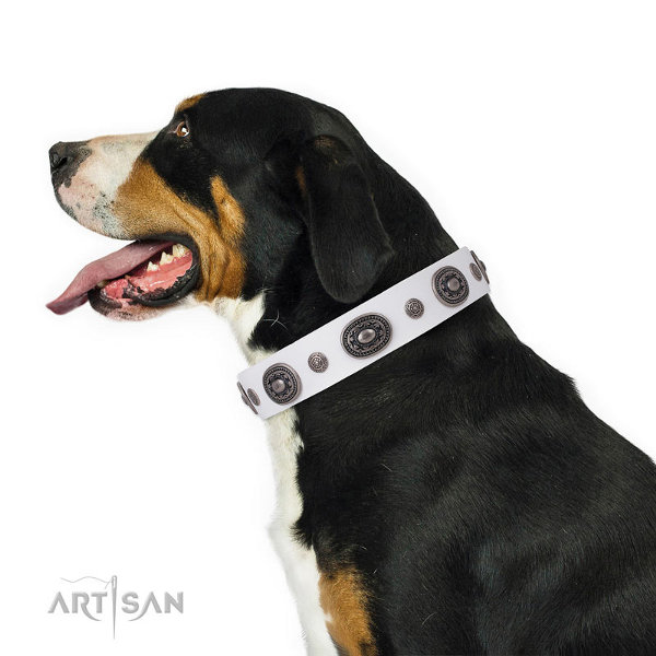 Swiss Mountain Dog Collars