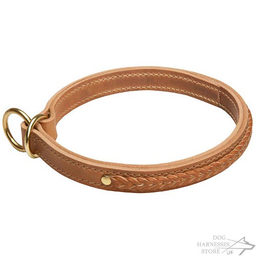 Leather Slip Collar for Dog