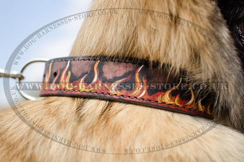 Hand Painted Leather Dog Collars