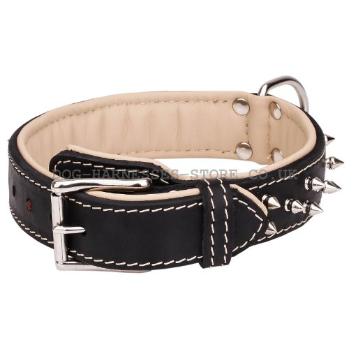 Two Ply Leather Dog Collar