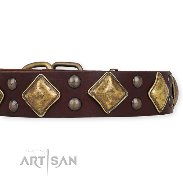 Wide Brown Leather Dog Collar