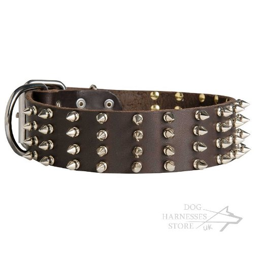 Wide Dog Collars UK