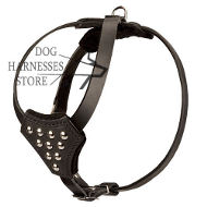Studded Dog Harness for Small Dog & Puppy