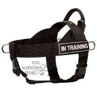 Nylon Dog Harness UK K9 for Best Control and Training, Patches