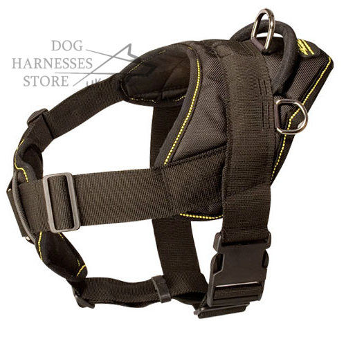 Dog Sport Harness