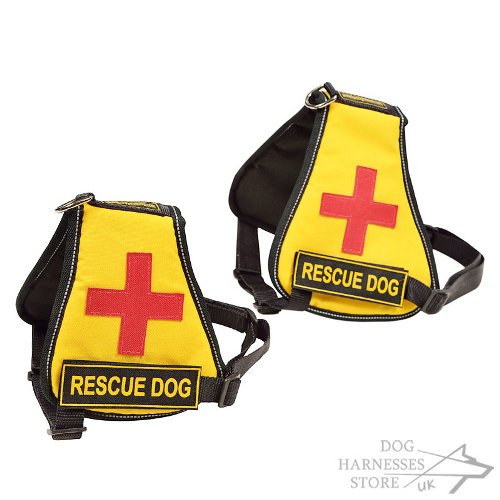 Buy Service Dog Vest UK