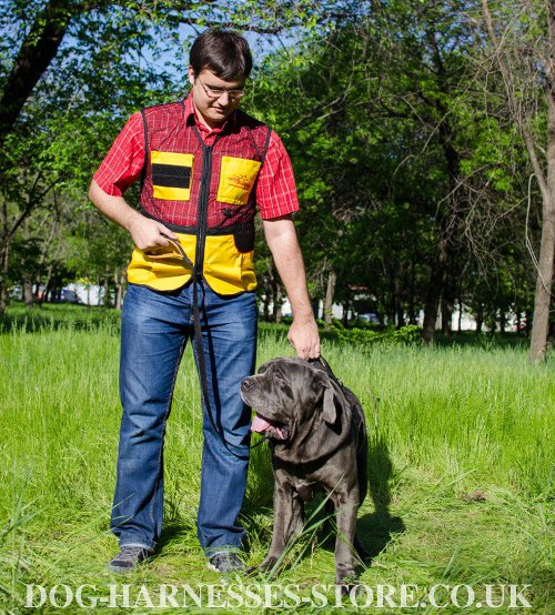 Dog Harness for Mastiff UK