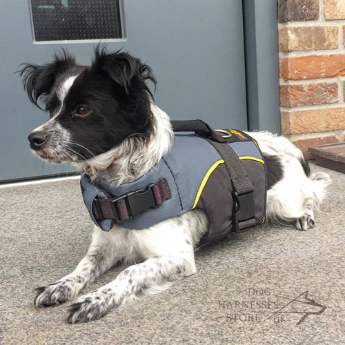 Warm Dog Harness Vest