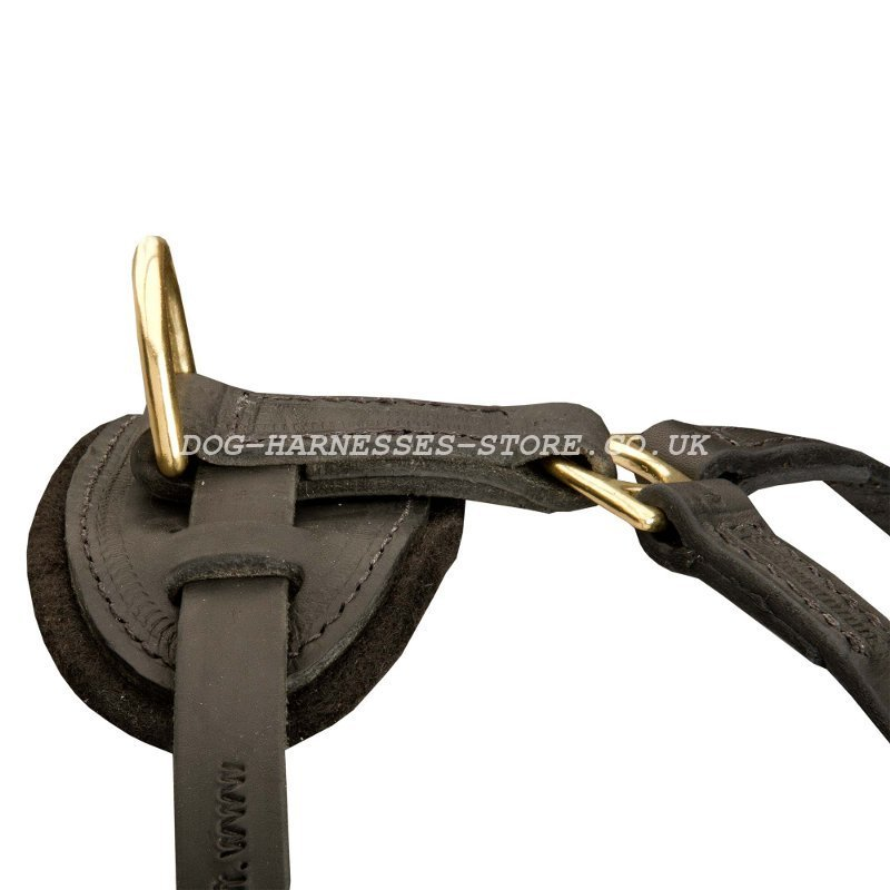 Heavy Duty Dog Harness besides Bloodhound Tracking moreover Dog Harness Diagram besides K9 Dog Inserts For Vehicles further Index. on canine tracking harness