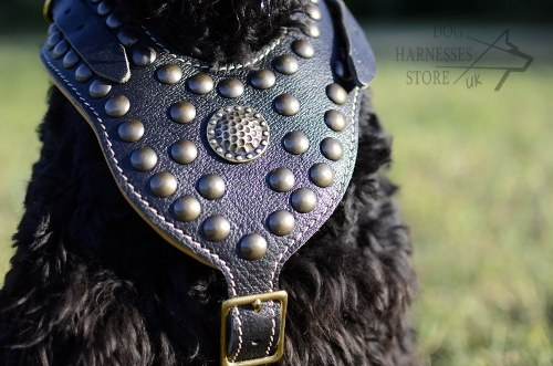 Giant Russian Terrier Dog Harness