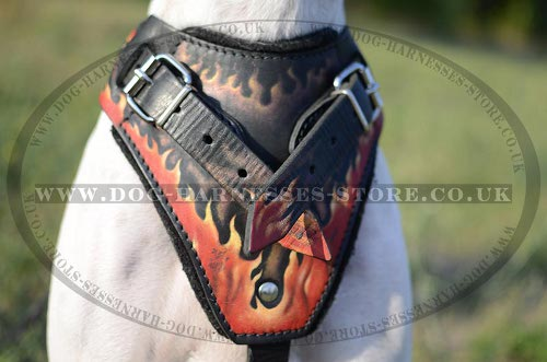 English Pointer Harness Hand Painted