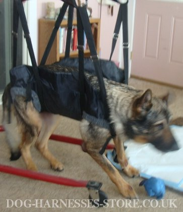 K9 Tactical Dog Harness