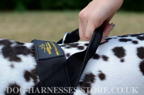 Nylon Dog Harness for Dalmatian UK