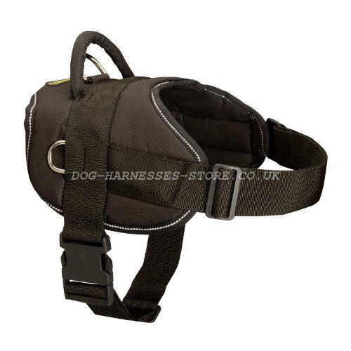Walking Dog Harness UK