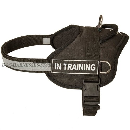 Nylon Dog Harness UK, Reflective