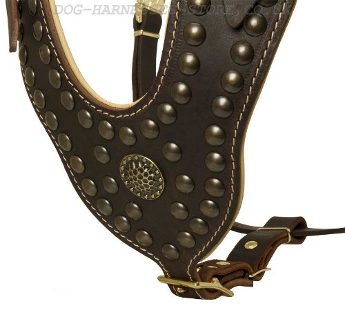 Royal Leather Dog Harness