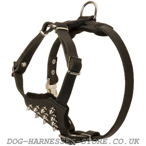 Spiked Leather Dog Harness UK