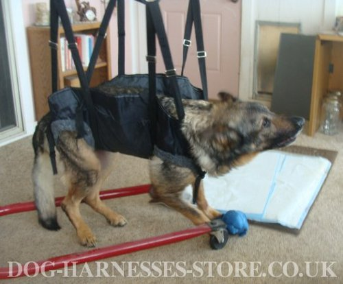 Tactical Dog Harness for Sale