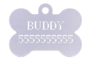 Dog ID Tags Near Me