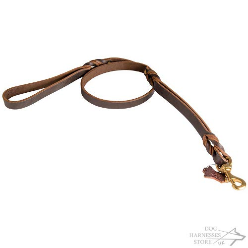 Dog Leash with Two Handles