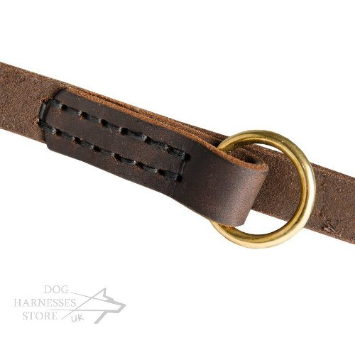 Leather Dog Leash with Brass Fittings
