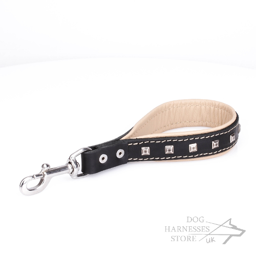 Short Leather Leash