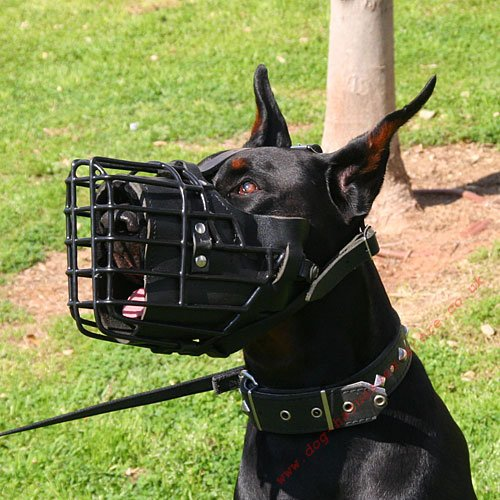 Wire Muzzle for Doberman