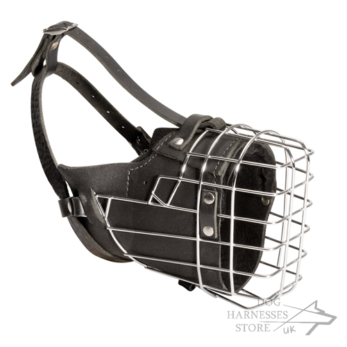 Wire Dog Muzzle in UK