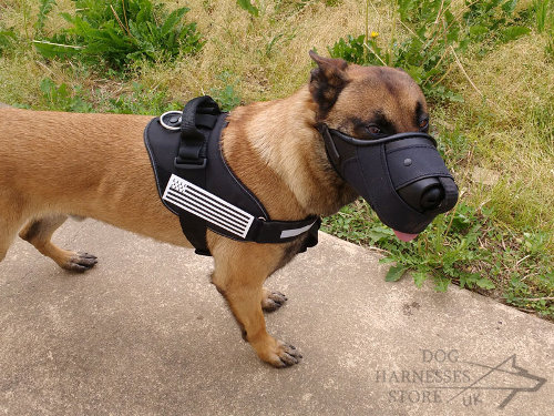 Dog Muzzle for Belgian Malinois