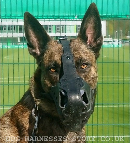 Herder Dog Muzzles UK