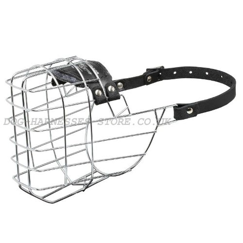 Best Design Wire Dog Muzzle