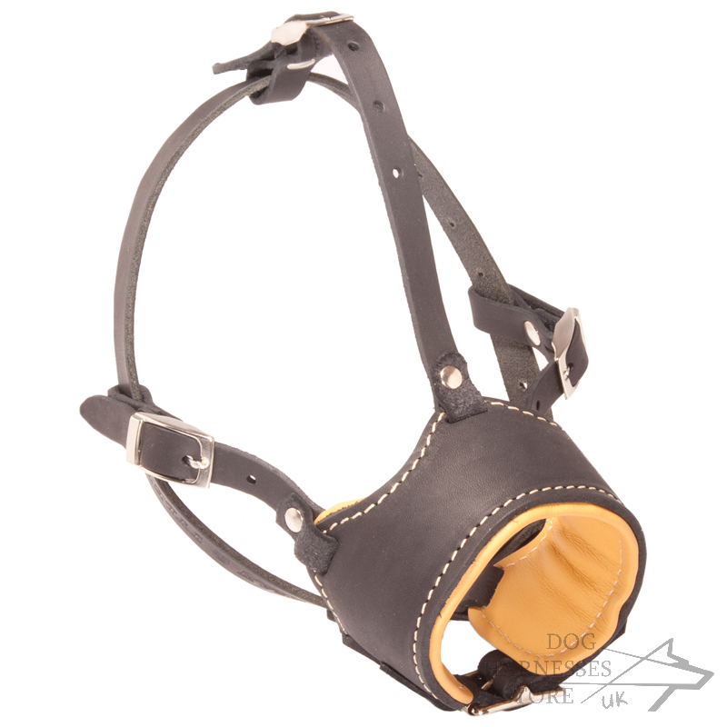 Leather Dog Muzzle Muzzle For Dogs Padded 163 72 10